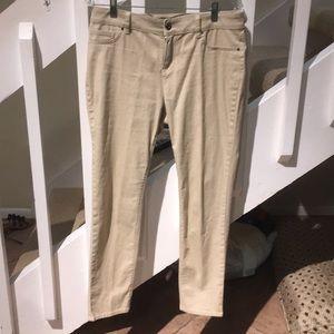 Chaus sport Pants - Chelsea sport khaki jeans